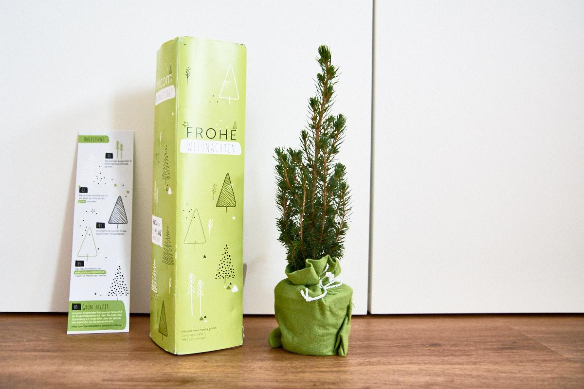 Weihnachtsbaum Geschenk
