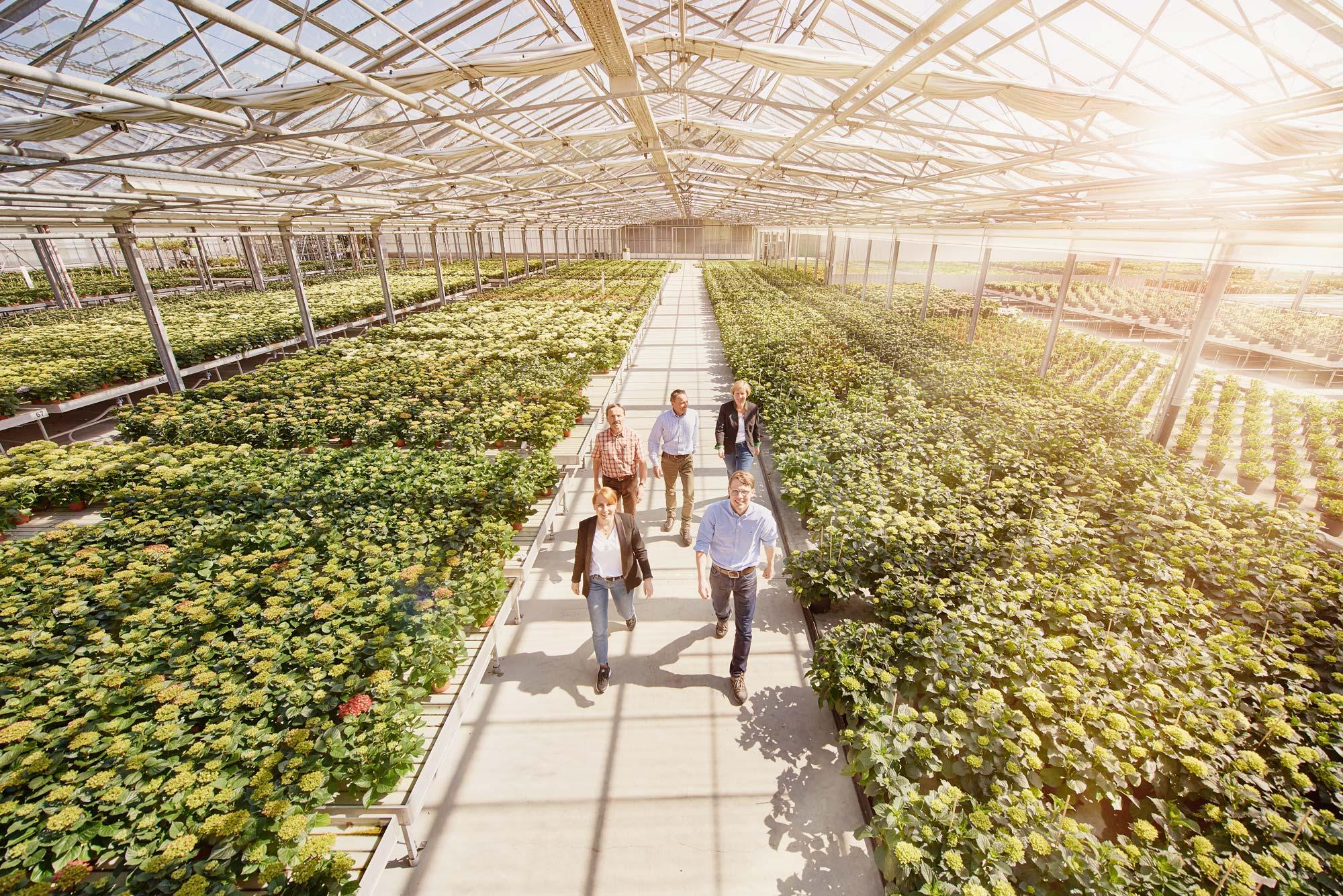 Unternehmensfotograf_Firmenportrait_SchwaebischeAlb_Bodensee_Fotograf, Inhaberportrait, in Bewegung, lebendig, Produktionshalle für Pflanzen