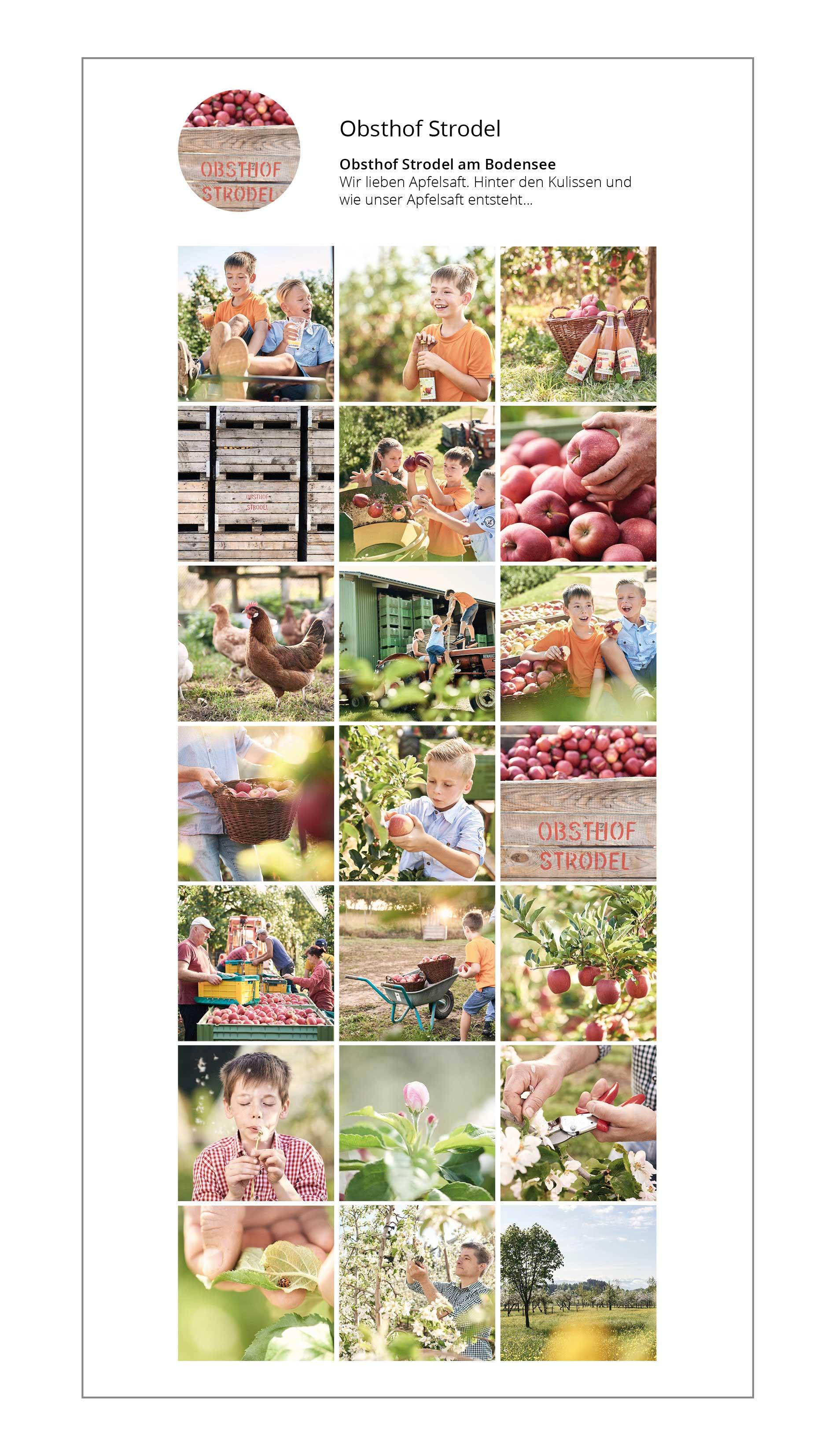 Fotograf, Werbefotoshooting, Bilderpool für Instagram Business Account, einheitliche Unternehmensbilder für Social Media