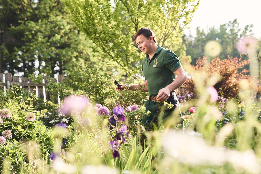 firmenportrait gartenbau, Gartenarbeit